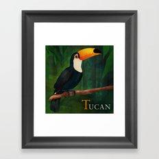 ABC Poster  T - Tucan Framed Art Print