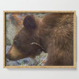 Collared Cinnamon Black Bear at Vermillion Lakes painterly Serving Tray