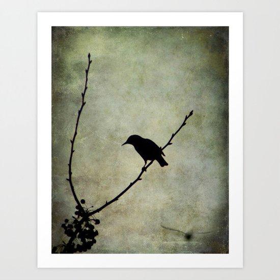 Oh Black Bird Art Print