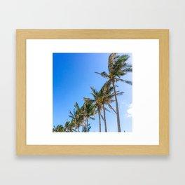 Palm Trees, Blue Sky Framed Art Print