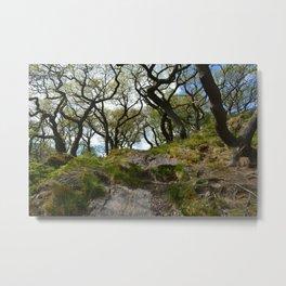 Bendy Trees Metal Print