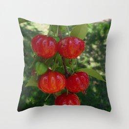 Fruta Pitangas Brasileiras !! Throw Pillow
