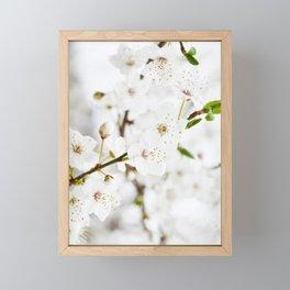 White blooming Framed Mini Art Print