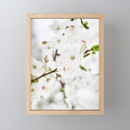 White blooming Framed Mini Art Print