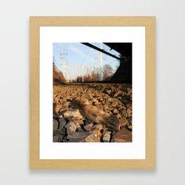 Deer Hoof Framed Art Print