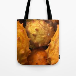 African Horned Melons Tote Bag