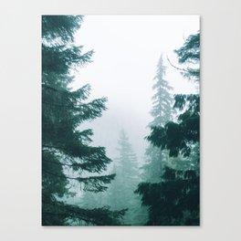 Mount Rainier Fog Canvas Print
