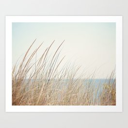Beach Grass Photography, Calming Coastal Photo Print, Relaxing Beach House Photograph, Seaside Photo Art Print
