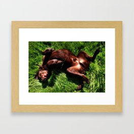 Charlie Bear Framed Art Print