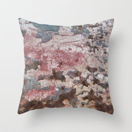 Cracking Paint and Rust Abstract Throw Pillow