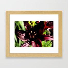 Scarlett Red Framed Art Print
