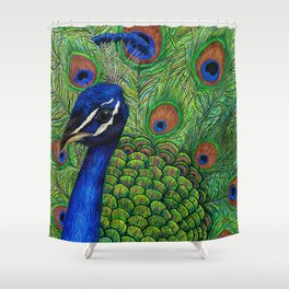 Peacock by Lars Furtwaengler   Ink Pen   2011 Shower Curtain