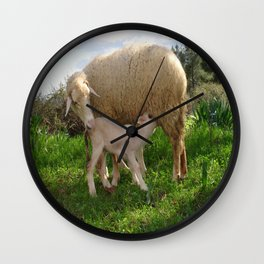 Lamb Suckling From An Ewe Wall Clock