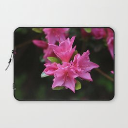 Pink Azelaea Spring Flowers Pretty Flowers Blossoms Nature Flora Laptop Sleeve