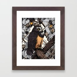 Spectacled Owl Framed Art Print