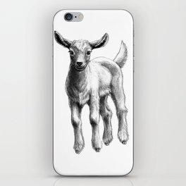 White Goat Baby SK133 iPhone Skin