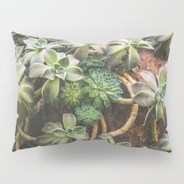 Botanical Gardens - Succulent #882 Pillow Sham