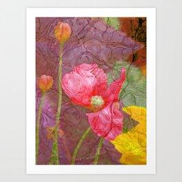 The last Poppys 1 Art Print