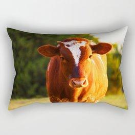 Curious Orange Rectangular Pillow