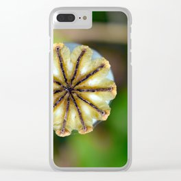 Poppy seed pod. Clear iPhone Case