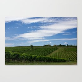 wine and its country Canvas Print