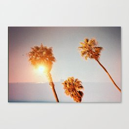 three's company Canvas Print