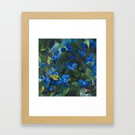 A Blueberry View Framed Art Print