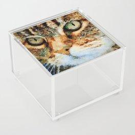 Tabby Cat Acrylic Box