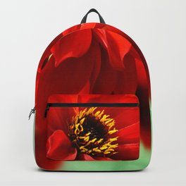 Dahlia red 082 Backpack
