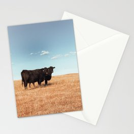 Prairie Cattle  Stationery Cards