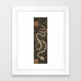 Snake Skeleton Framed Art Print
