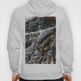 Ocean Weathered Natural Rock Texture with Barnacles Hoody
