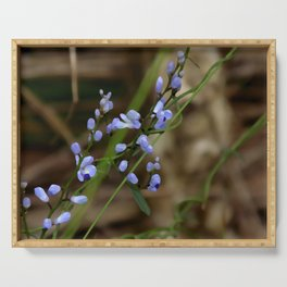 Forget Me Not Serving Tray