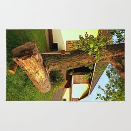 Tree trunk bench on a summer evening | landscape evening Rug