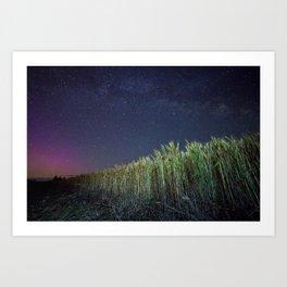 Wheat Field Planetarium Art Print