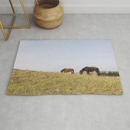 Dartmoor Ponies Rug