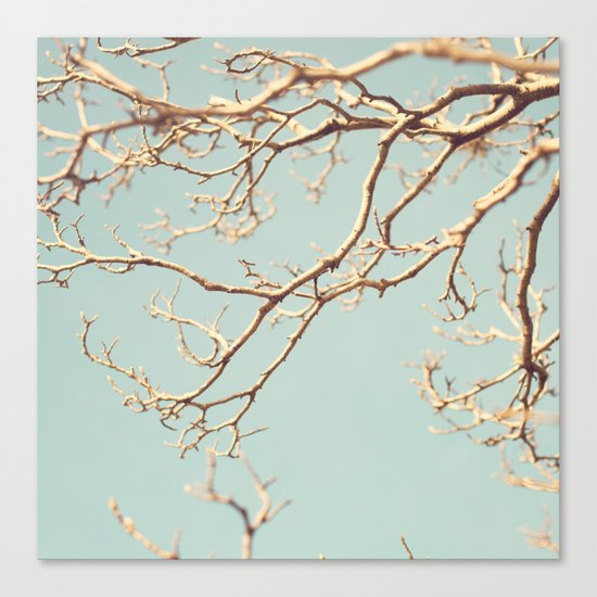 Pale Blue Winter (Tree branches on a retro pale blue sky) Canvas Print