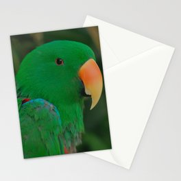 Green Eclectus Parrot Stationery Cards