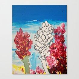 Alpinia purpurata – Red Ginger Flower Canvas Print
