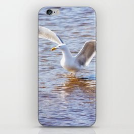 Two at Sea iPhone Skin