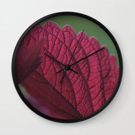 Coleus Pink II Wall Clock
