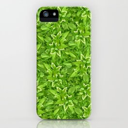 Texture with green leaves iPhone Case