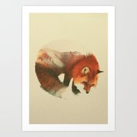 fox Art Prints featuring Snow Fox by Andreas Lie