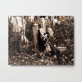 Overgrown Graves Metal Print