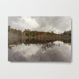 a pond Metal Print