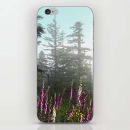 Misty Mountain Wildflowers iPhone Skin