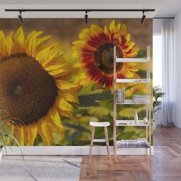 Sunflower Friends at Dusk by Reay of Light Wall Mural