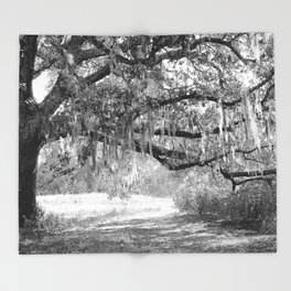 New Orleans Oak Tree Throw Blanket