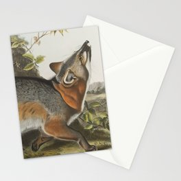 Vintage Illustration of a Grey Fox (1843) Stationery Cards