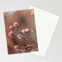 New Life -  Fresh Spring Buds after rain, Rose and earth tones, Nature Photography Macro Stationery Cards